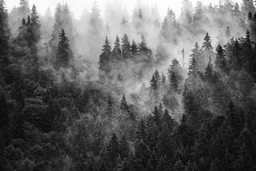 Panel Szklany Czarno-Biały Misty mountain landscape