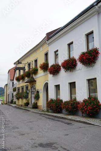 Fotografie, Obraz  strasse in königswiesen in perg in österreich