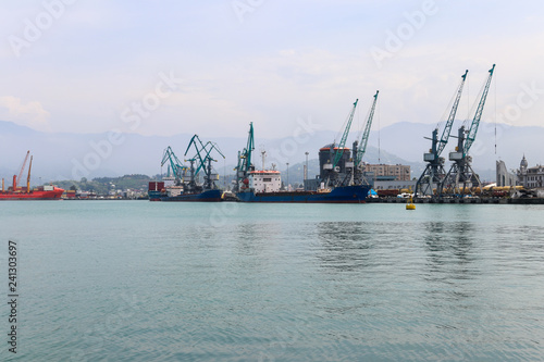 Tuinposter Poort Cargo port on Black Sea in Batumi, Georgia