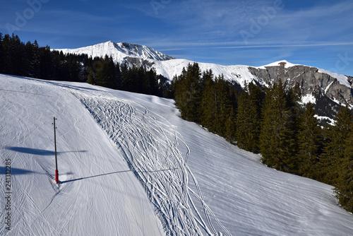 Traces de ski dans l'Oberland bernois, Suisse