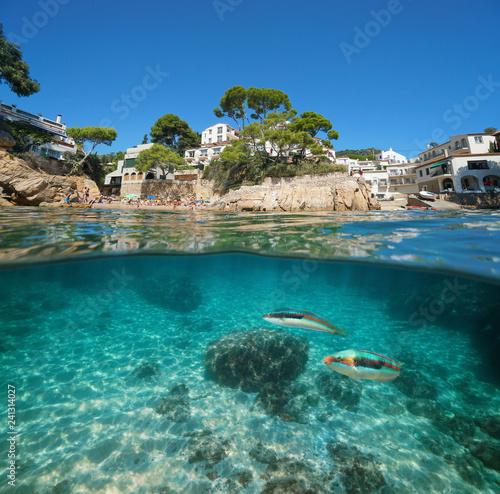 Spain coastline village and fish underwater sea
