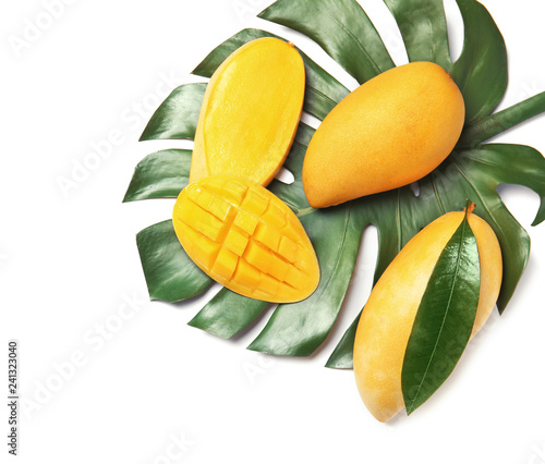 Composition with fresh mango fruits on white background, top view