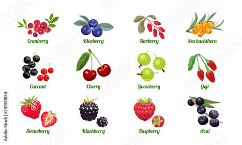 Set of berries isolated on white background Wallpaper Mural