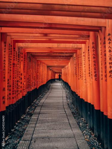 Poster Kyoto Fushimi Inari Taisha - many torii in Kyoto, Japan