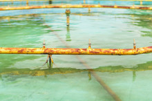 Rusted Yellow Pipes And Water ...