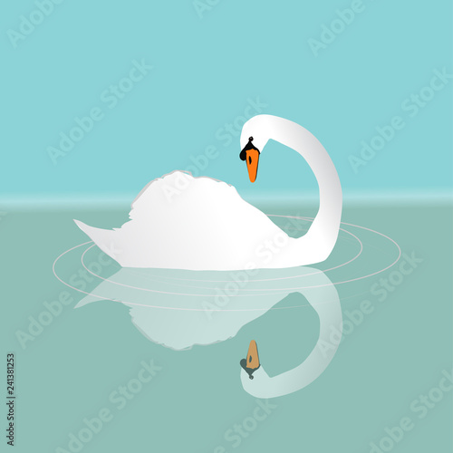 Fotografie, Obraz  A white swan swimming in the water