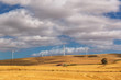 canvas print picture - Windmills in the countryside of South Africa