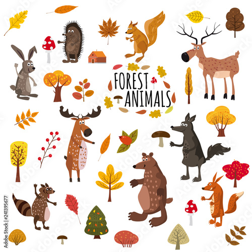 Poster de jardin Zoo Set of cute forest animals bear, raccoon, squirrel, hare, fox, wolf, hedgehog, moose, deer, autumn leaves trees, trend modern style, vector, illustration, isolated