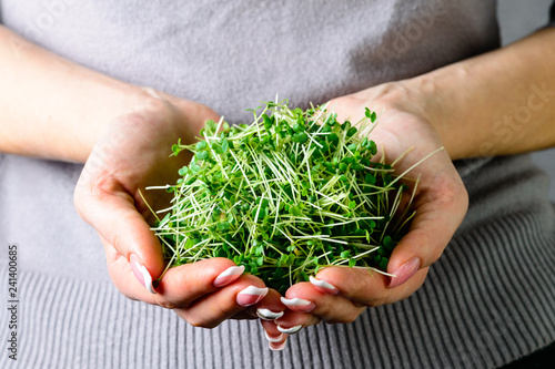 Valokuva  microgreen arugula sprouts in female hands healthy eating concept