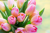 Fototapeta Tulipany - Spring flowers. Living coral tulip bouquet on the bokeh background.