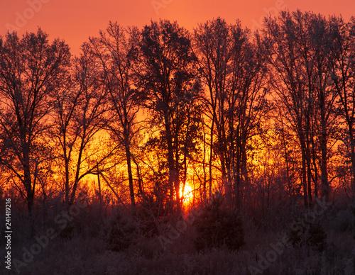 Poster Bordeaux sunrise on a frosty morning