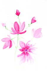 Hand drawn watercolor pink flower