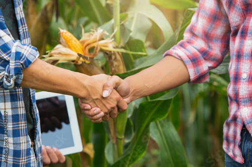 Fotografía Young smart farmer standing and shaking hands on corn  field