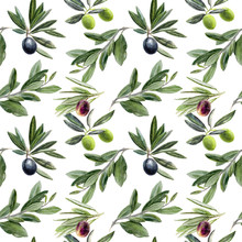 Olives Branch Watercolor Hand Drawn Seamless Pattern.