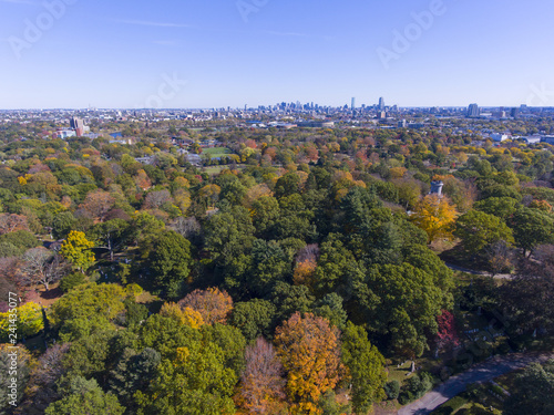 Photo Mount Auburn Cemetery and Boston skyline in fall, Watertown, Greater Boston Area, Massachusetts, USA