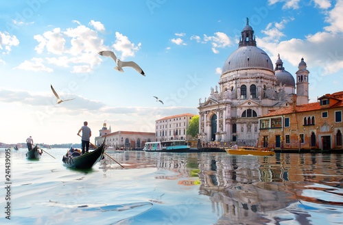 Canvas Prints Venice Seagulls and Grand Canal