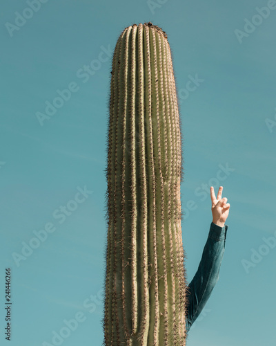 Spoed Foto op Canvas Cactus A man stands behind a cactus with his hand in the air giving a peace sign