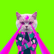 canvas print picture - Fashion hipster Cat with lasers from eyes. Animal fun collage art