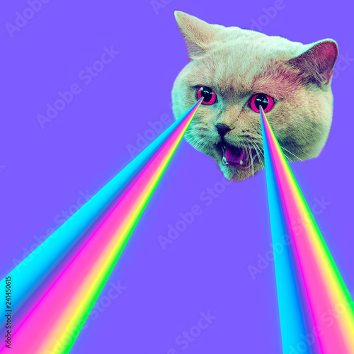 Evil Cat with rainbow lasers from eyes. Minimal collage fashion concept