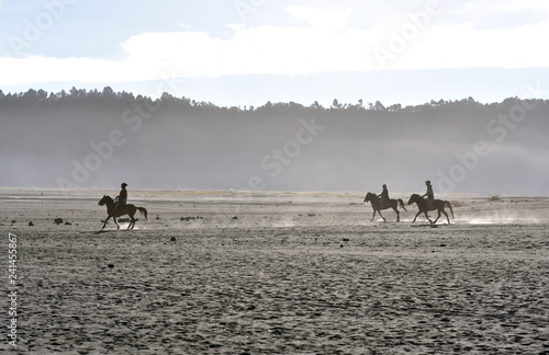 Poster de jardin Vache Horse riders guide galloping in the stony desert of Mount Bromo, Java Island, Indonesia