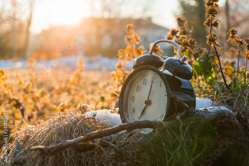 Leinwand Poster  MORNING ALARM CLOCK IN A COLD ICY GRASS WITH SUNRISE