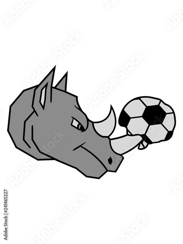 Sport Verein Club Loch Zerstort Fussball Ball Geplatzt