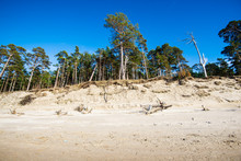 A View Of The Baltic Seacoast Under A C;lear Blue Sky On A Sunny Day, Latvia
