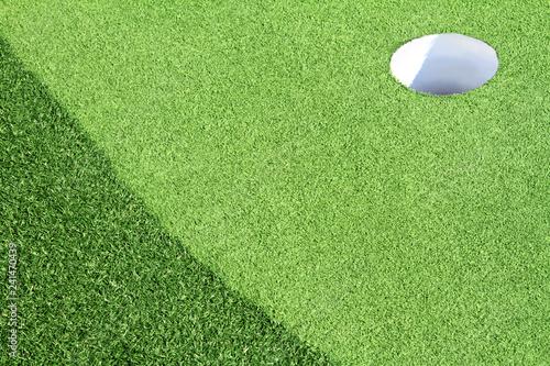 A golf putting green with artificial grass