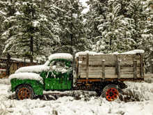 Snow Falling On Trees And Truck