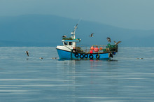 Small Fishing Boat With Lobste...
