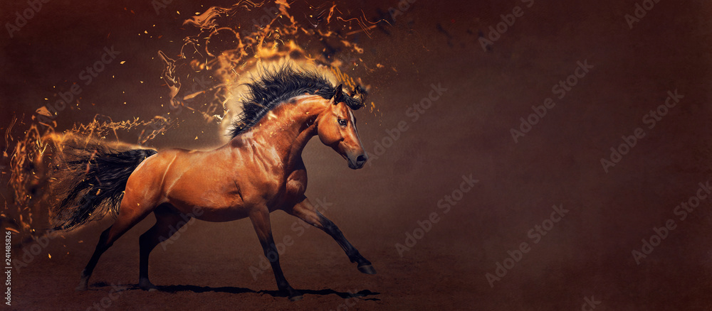 Fototapety, obrazy: Powerful stallion galloping. Concept illustration