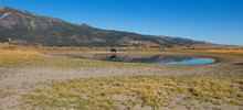 Horseback Riding, Washoe Lake ...