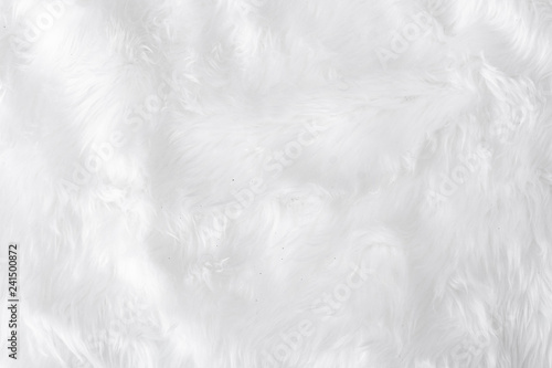 Fotografiet  Grey Fabric cotton cloth texture with blank soft material space for text and idea design