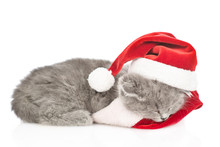 Kitten In Red  Christmas Hat Sleeping On Pillow. Isolated On White Background