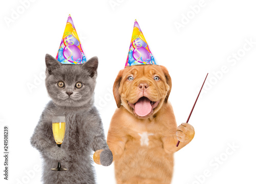 Cat And Puppy In Birthday Hats With Glasses Of Champagne Pointing Away On Empty Space