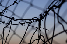 Barbed Wire Against The Sunset Sky