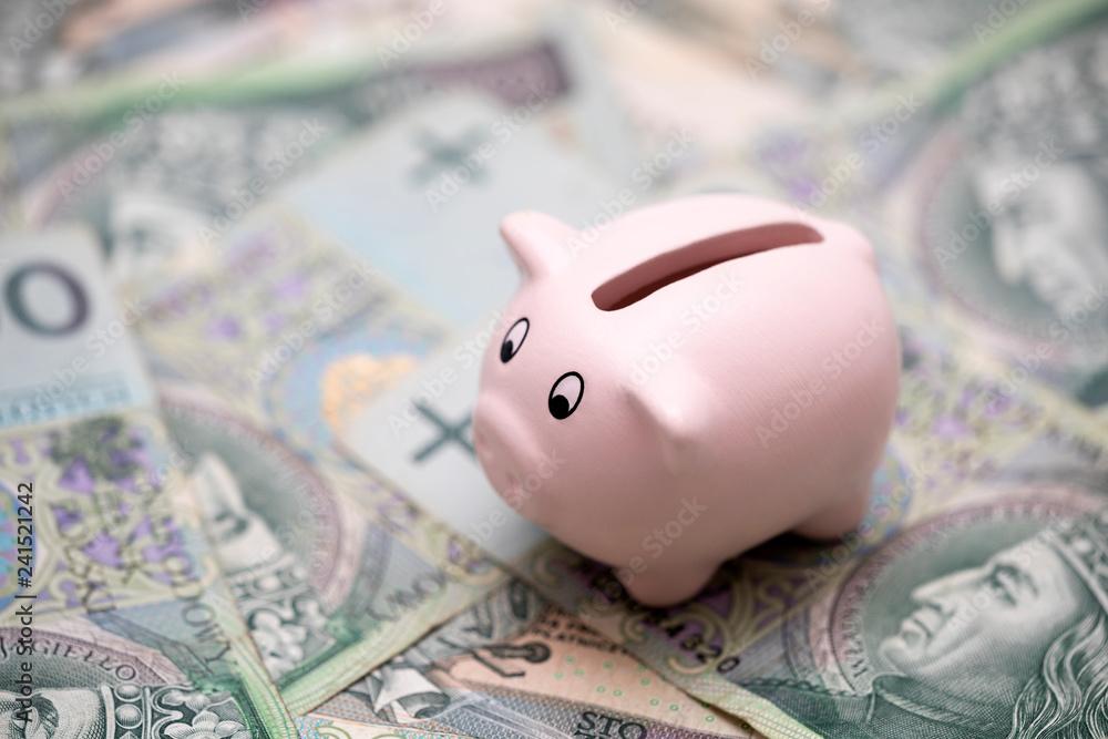 Fototapety, obrazy: Piggy bank on polish money