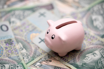 Piggy bank on polish money