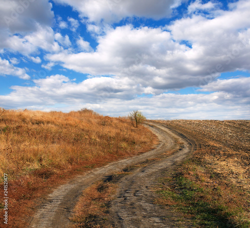 Beautiful Fall scene on curved unpaved road