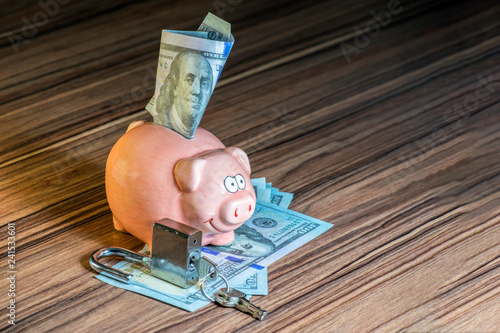 Fotografía  a piggy bank from which a hundred dollar bill looks out, and in front of it is a