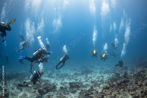 Photo Scuba diving in the Maldives underwater with divers