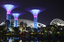 Supertrees At Night In Gardens By The Bay, Singapore
