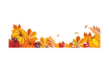 Thanksgiving Banner With Space For Text, Chokeberry, Rowan, Maple Leaves And Pumpkins Vector Illustration