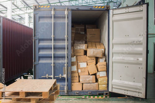 The cartons with loading out of container Canvas Print