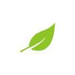 Leaf Icon Symbols Vector