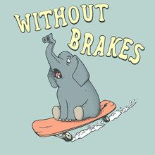 Elephant Skateboarder Rides On Skateboard