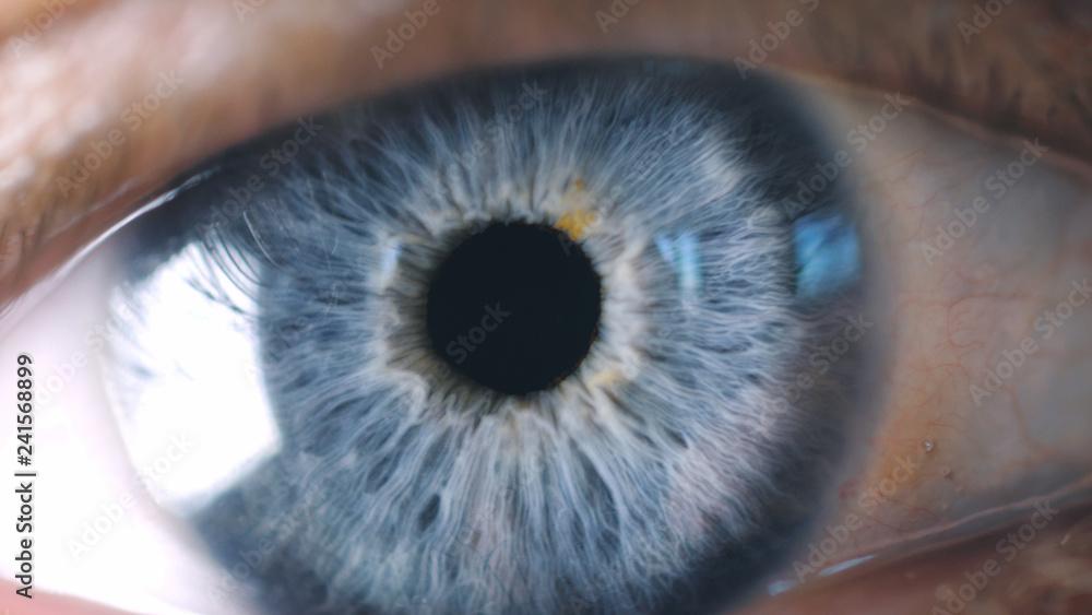 Fototapety, obrazy: Close-up detail of man eye. Macro