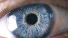 Close-up Detail Of Man Eye. Macro
