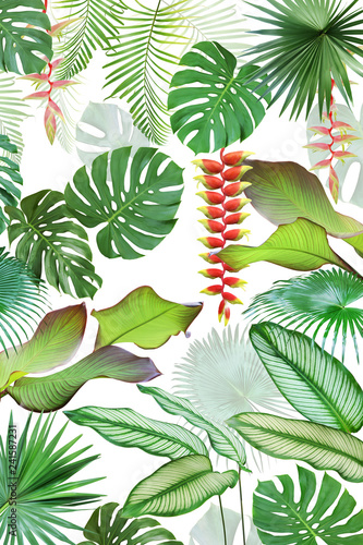 Exotic Tropical Leaves and Flowers Isolated on White Background Natural Pattern Design - 241587231