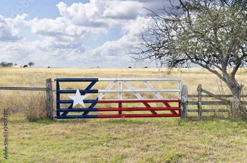 Fotografia, Obraz Texas Lone Star flag painted on gate to grazing meadow